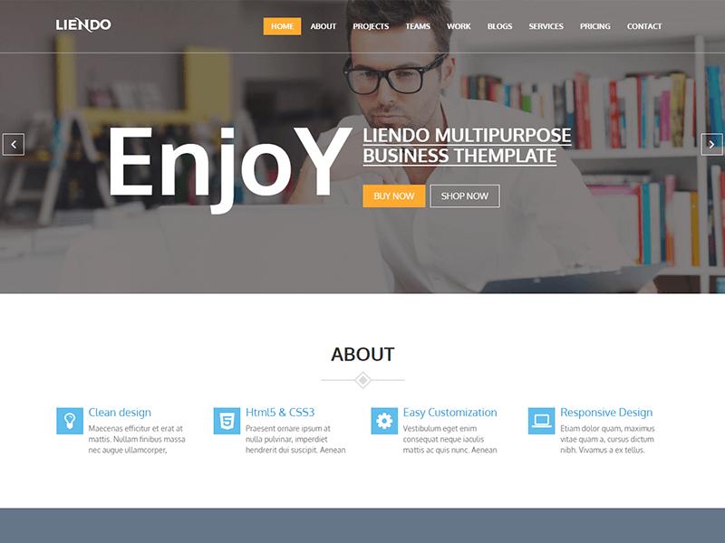 Liendo – Business HTML Template
